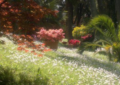 Bosco Romantico- primavera