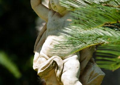 giardino- particolare
